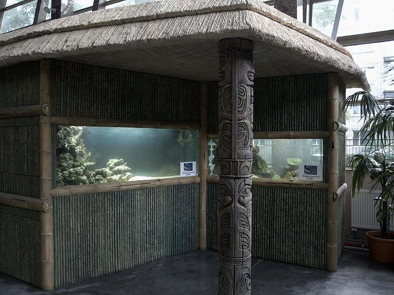 Обезьянник Калининградского зоопарка – к Дню города