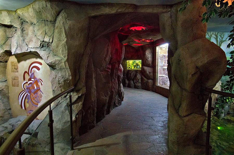 """Вход в экспозицию """"Пещера"""""""