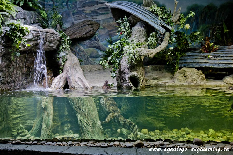 Акватеррариум в Воронежском океанариуме