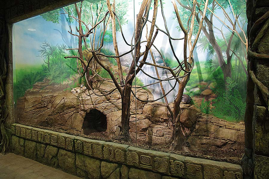 """The aviary with deserted fennec foxes and lemurs in the """"Jungle"""" exposition"""