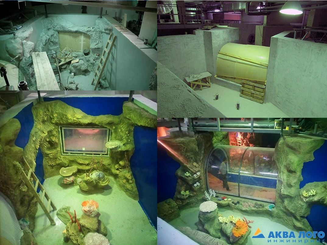 The Oceanarium in Novosibirsk is a place for rest and new knowledge