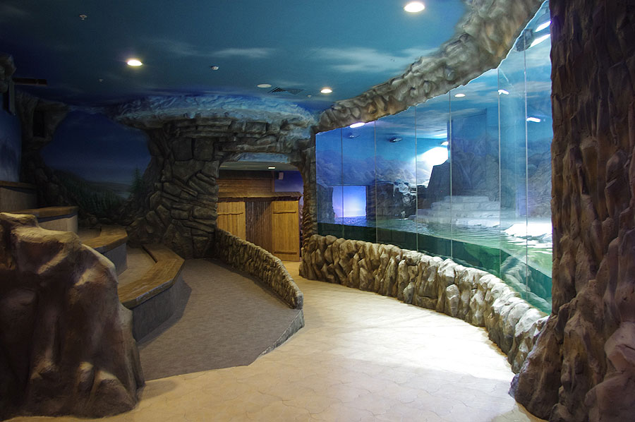 """The aviary of north fur seals with seal shows compartment in the exposition """"Polar waters"""""""