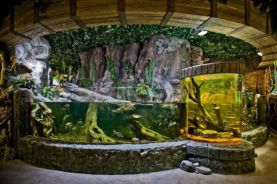 """The complex of the arc open aquariums with two cylindrical aquariums – """"the watchtowers"""" – in the exposition """"Jungle"""""""