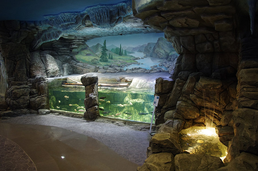 """The open trout aquarium with wave machine in the exposition """"Polar waters"""""""