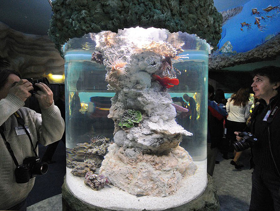 """The cylindrical aquarium with lionfishes in the exposition """"Seas and oceans"""""""
