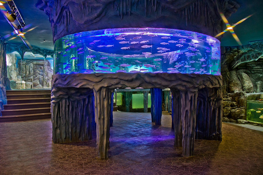"""In the """"Polar waters"""" exposition the annular aquarium, unique for Russia and the CIS, dominates visually"""