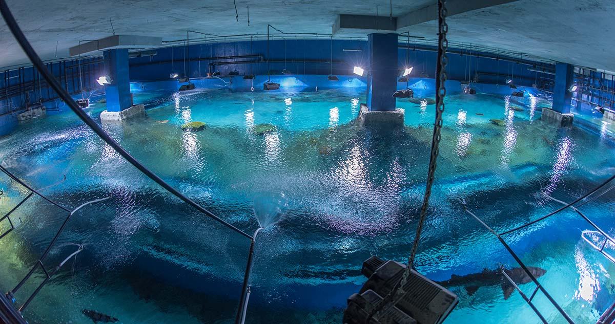 Главный морской аквариум сверху (техническая зона)