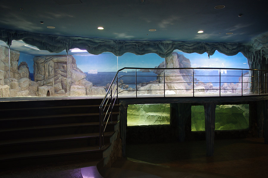 """The aviary of penguins in the exposition """"Polar waters"""""""