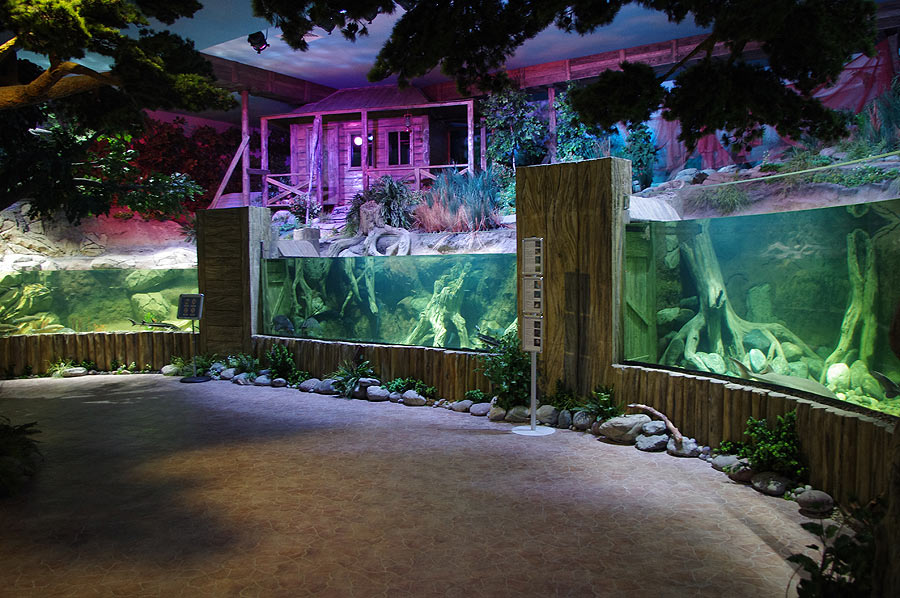 """The aquarium complex in the exposition """"Forests and steppes"""""""
