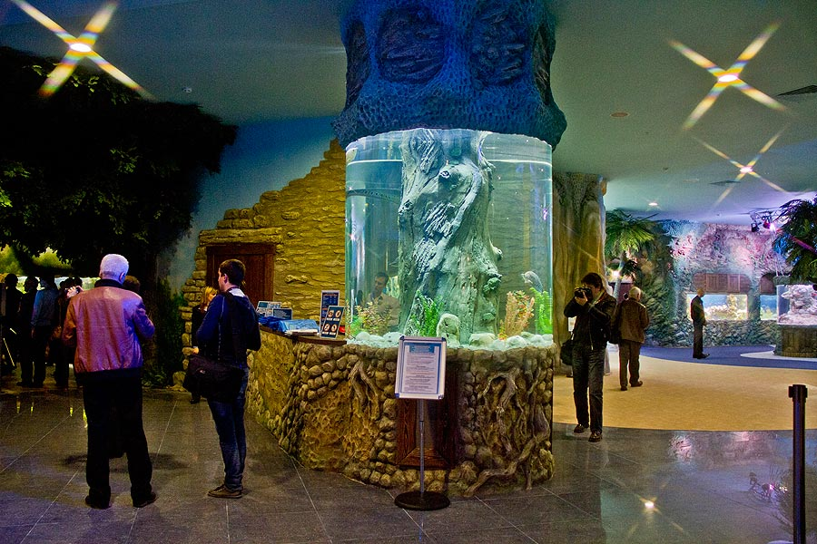 """Cylindrical aquarium at the beginning of the exposition """"Forests and steppes"""""""
